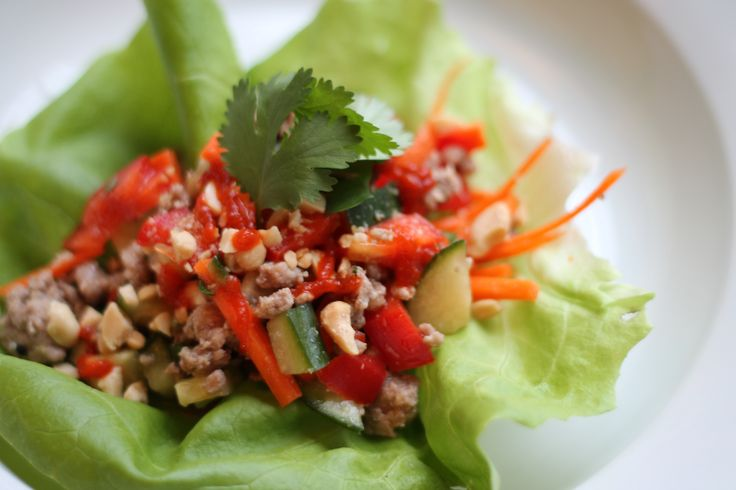 Elizabeth's Pork and Lettuce Wraps- - - note: she didn't use any ...