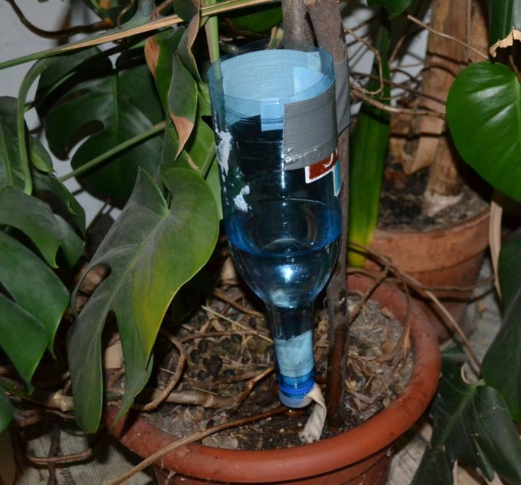 Drip irrigation for potted plants apartment pinterest - Diy drip irrigation systems ...