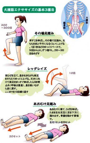全ては太ももの筋力と大腰筋 Found on f.hatena.ne.jp  全ては太ももの筋力