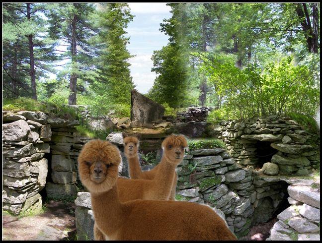 Salem (NH) United States  city photos : America's Stonehenge Salem, N.H. | See the USA, Hawaii & Alaska | P…
