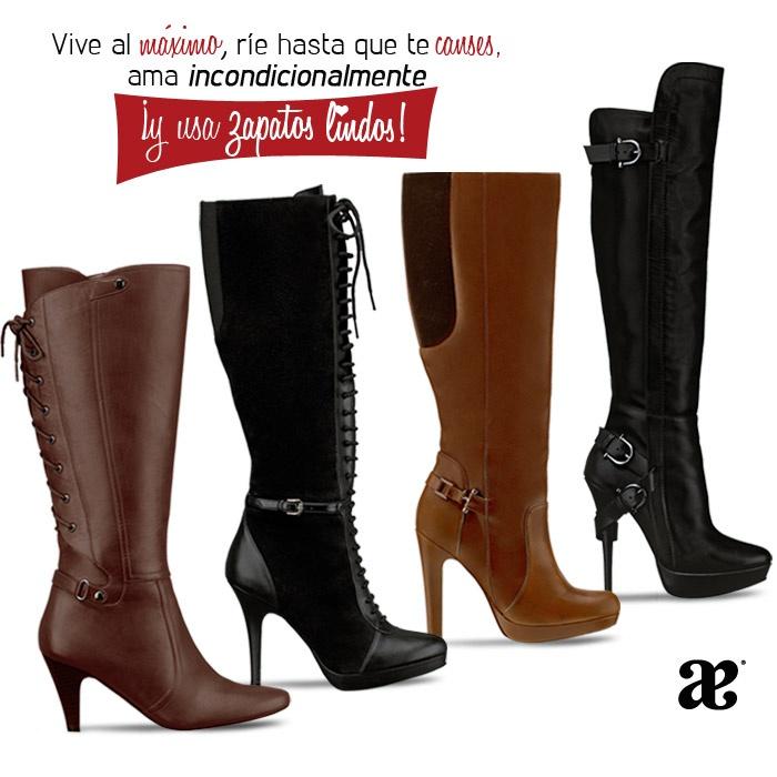 Andrea shoes online store. Shoes