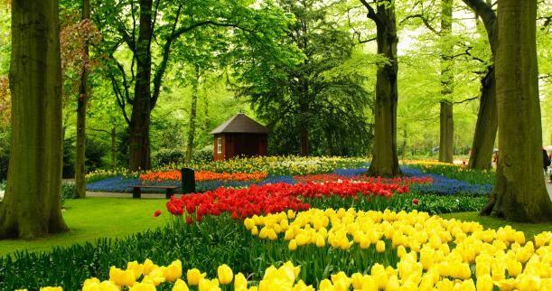 Memphis Botanic Garden Memphis Tn Garden Inspiration Pinterest