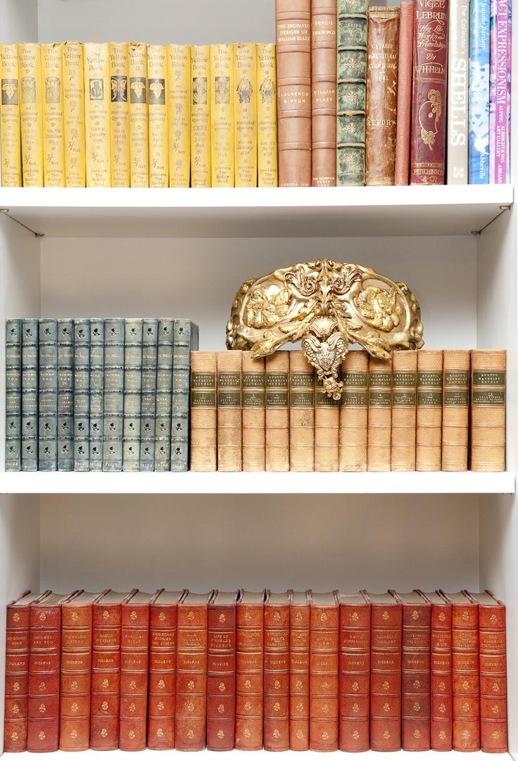 Color-organized bookshelves
