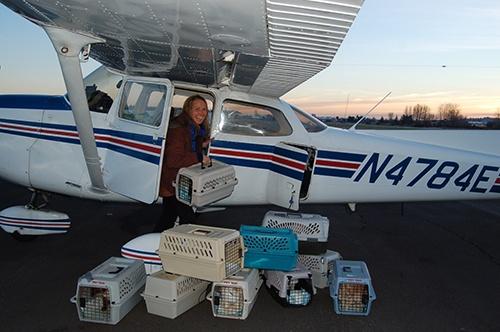 Pilot Turns Flying Hobby Into Full Time Rescue Effort