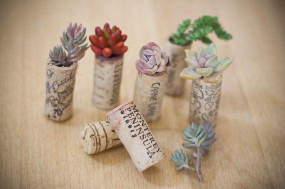 150 succulent mini garden recycled wine corks wedding favors succulents vintage corks. Black Bedroom Furniture Sets. Home Design Ideas