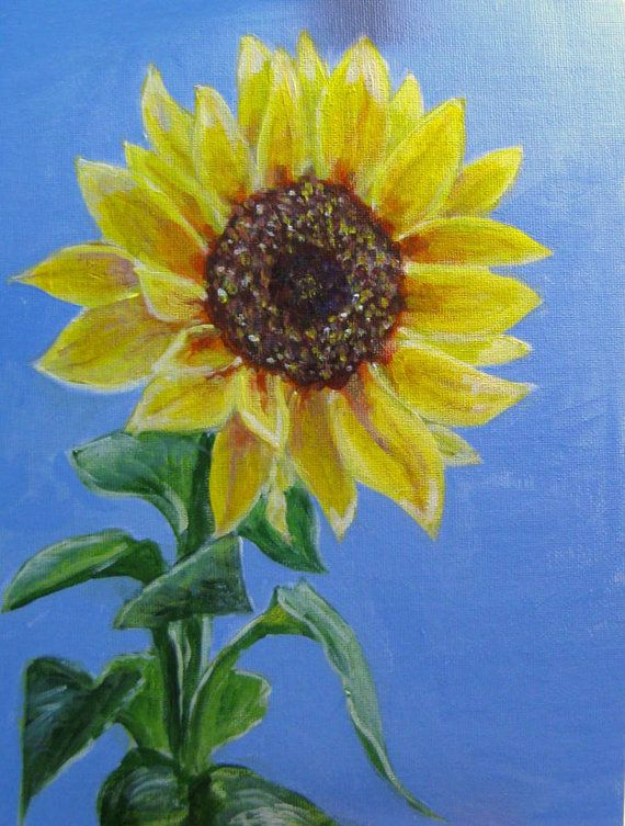 acrylic painting sunflower beauty