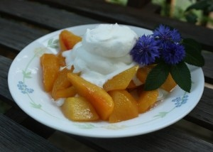 Grilled Peaches, marinated in berry vinegar & topped with fresh ...