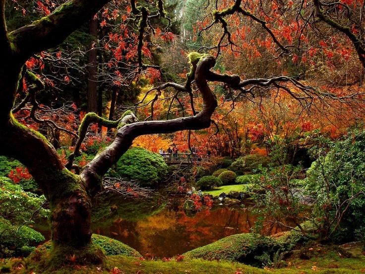 Breathtaking fall garden gardening pinterest - Gardening in fall ...