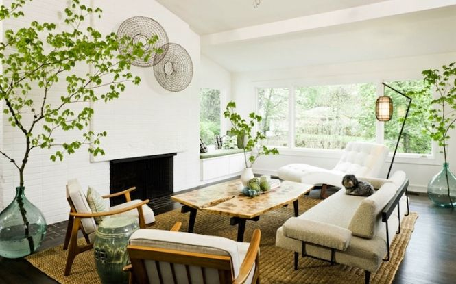 Plants In Living Room Awesome Decorating Design