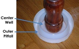 Bed Bug Traps Climbup Bed Bug Traps Four Steps to Effective Bed Bug Defense - Kill, Secure, Prevent, and ...