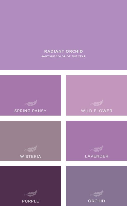 Radiant Orchid and The Company Store's array of supporting colors.