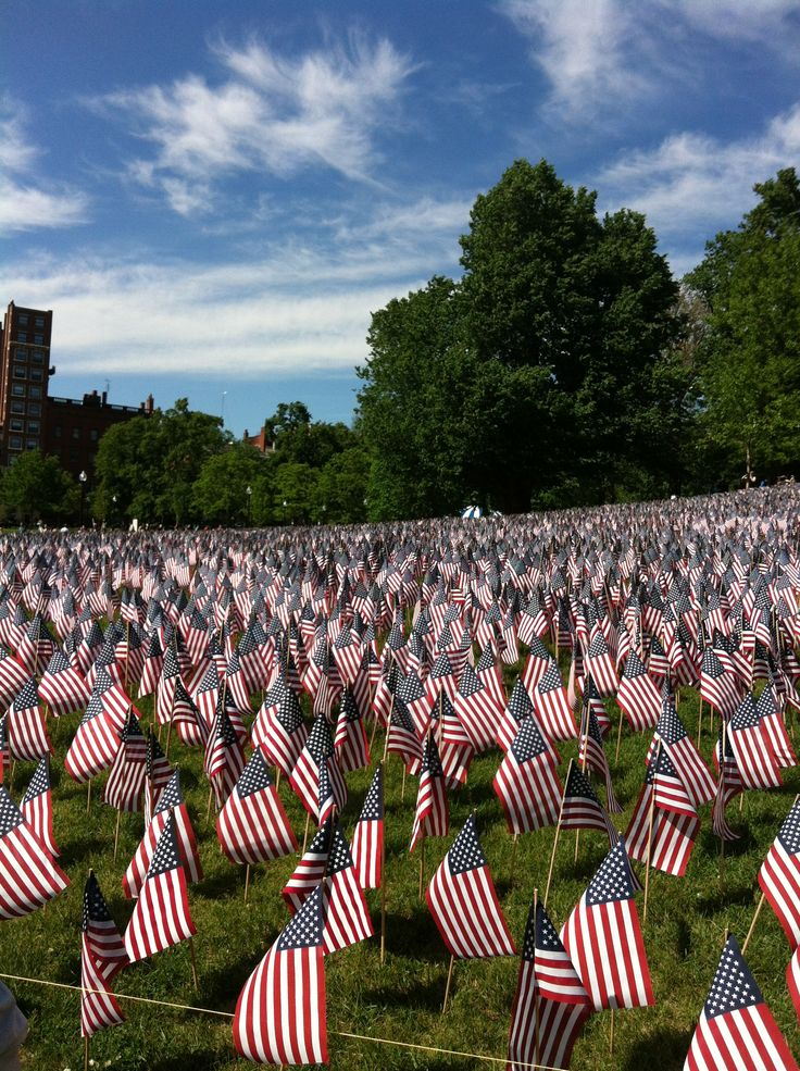 memorial day boston common flags