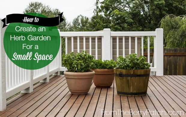 Pinterest discover and save creative ideas - How to create a garden in a small space image ...