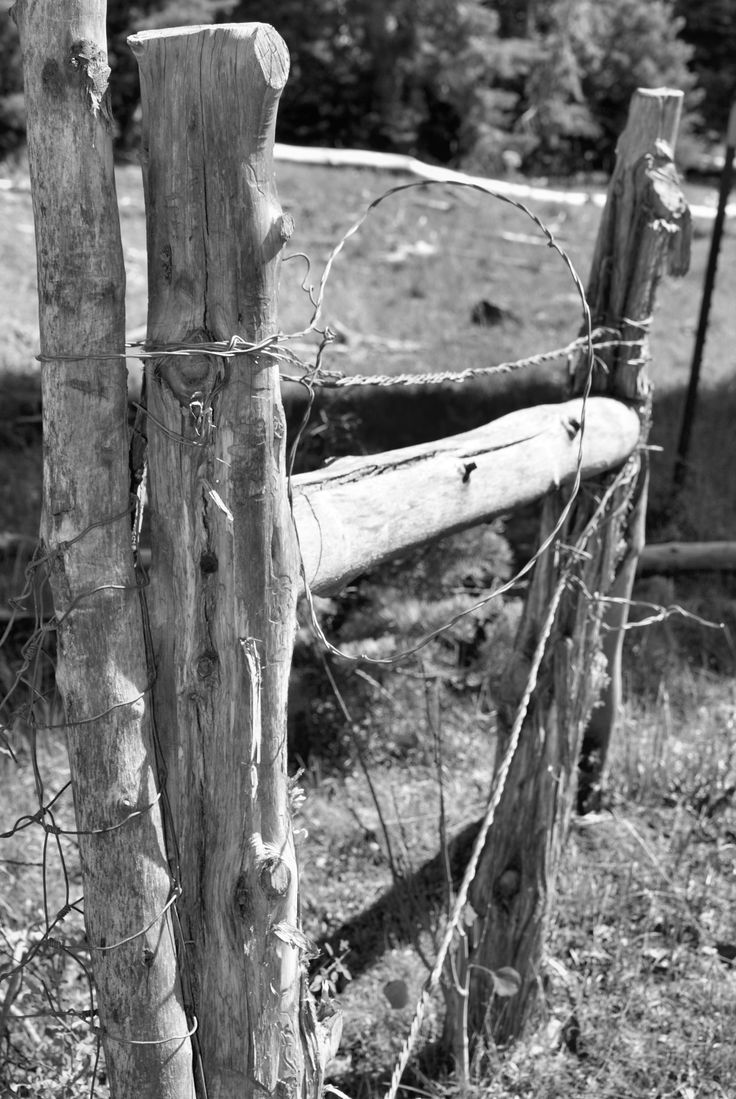 Old barbed wire and wood fence fences gates pinterest