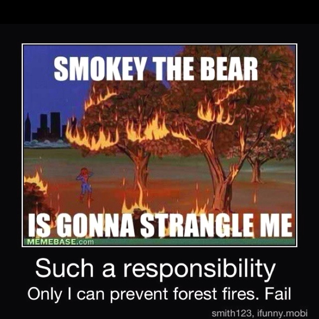 Only You Can Prevent Fires EC Mag