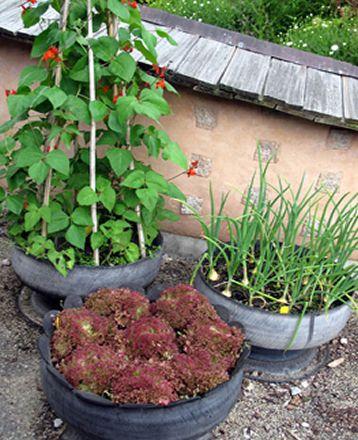 Tire planter old tires pinterest for Vegetable garden planters