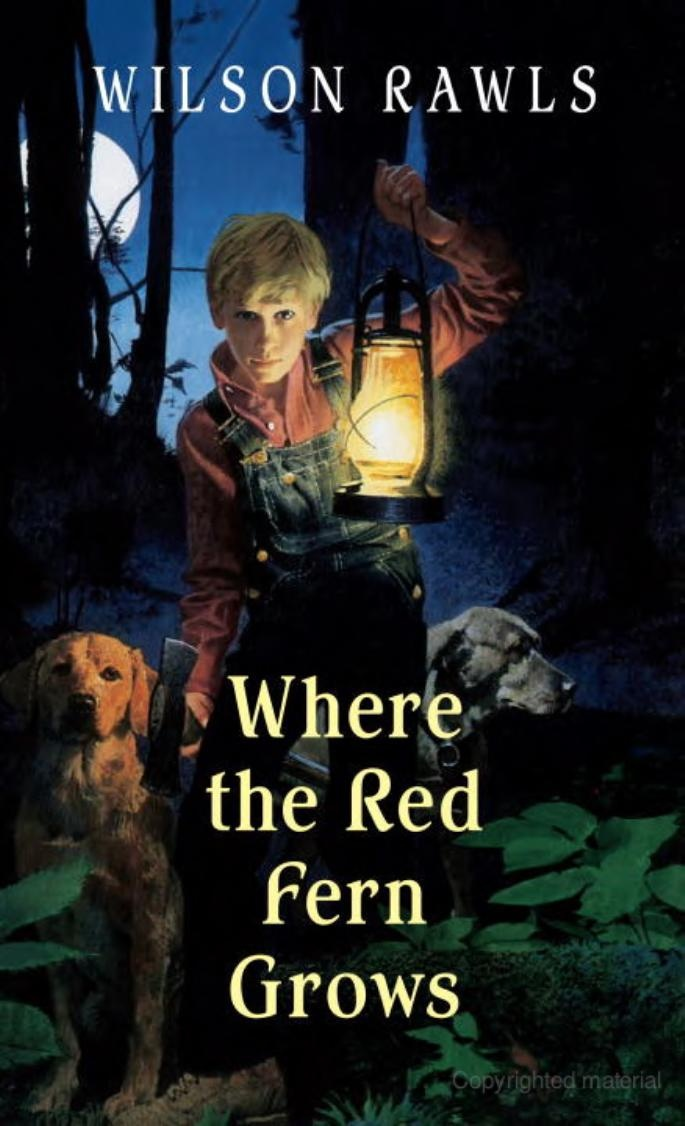 an analysis of old dan and little ann in where the red fern grows Literary text: where the red fern grows by wilson rawls, yearling, ny, 1996   little ann licked old dan's ears whenever they needed cleaning or were cut.