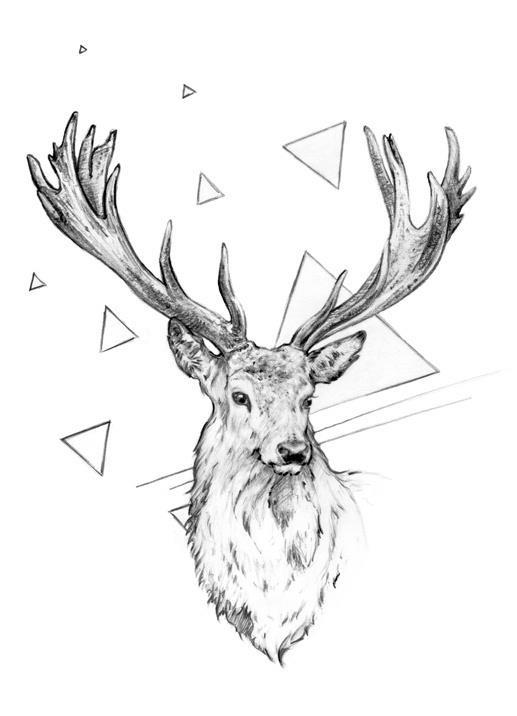 Dessin de cerf  Inspiration tatouage  Pinterest ~ Dessin Bois De Cerf