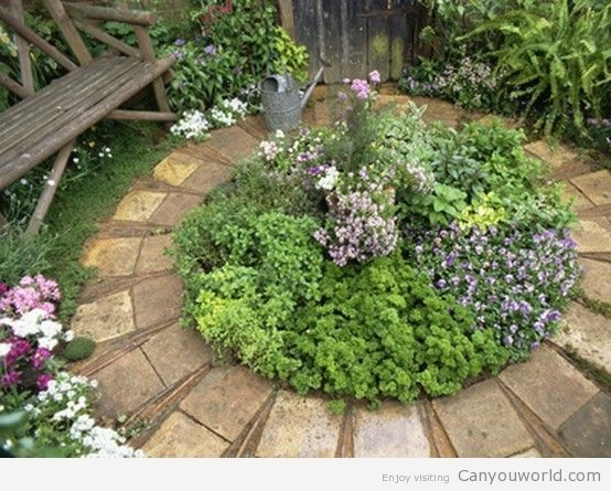 Circular herb garden growing herbs pinterest for Small round garden design