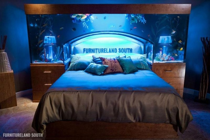 Fish tank head board the bedroom pinterest for Fish tank bed