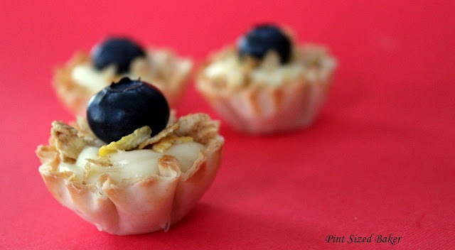 Scrumptious Mini Fruit Tarts filled with White Chocolate Ganache