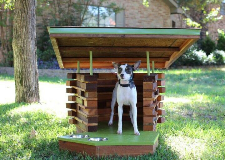 Cool Dog House Dogs Things Pinterest