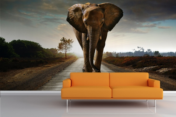 Elephant mural wallpaper against the wall pinterest for Elephant wall mural