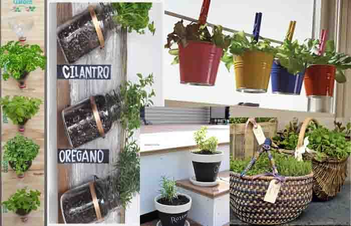 Making you own herb garden ideas Balconies love Pinterest