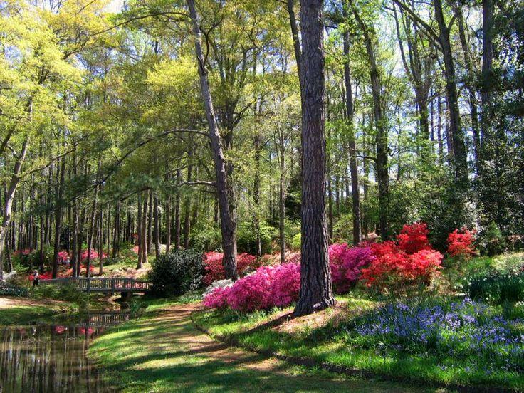 Callaway gardens ga places i have been pinterest - Callaway gardens pine mountain georgia ...