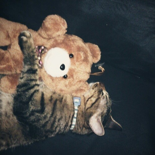 is my good friend Ted ...