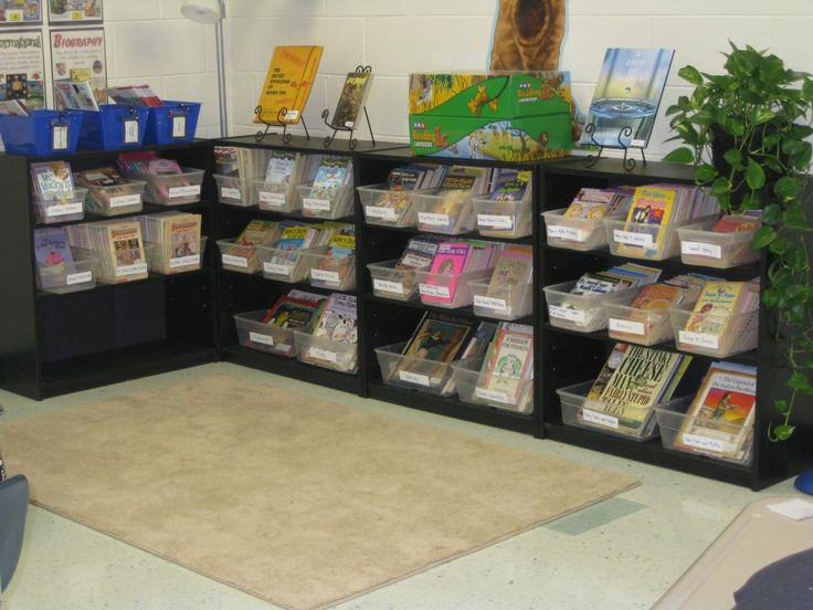 Classroom Library – Organization Pictures