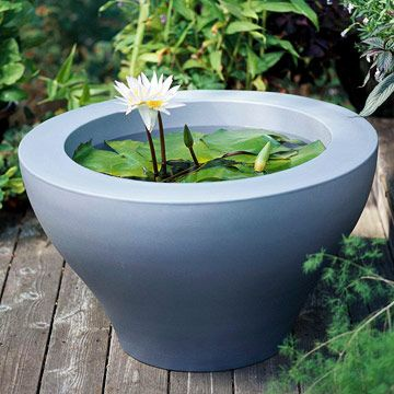Potted Ponds  -  Add a soothing water garden to your deck by creating one in a pot or raised bed. This delicate water lily makes a serene, inviting focal point. Repinned by www.claudiadeyongdesigns.com  READ THE BLOG on Container Water Gardens at www.thegardenspot.co.uk/my-blog/2013/06/planting-tips-and-ideas-for-a-container-water-garden.html