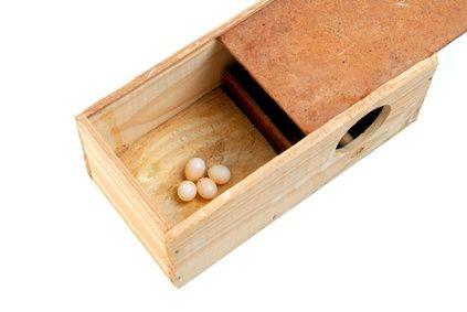 DIY Build a Heavy Duty Wood Storage Box