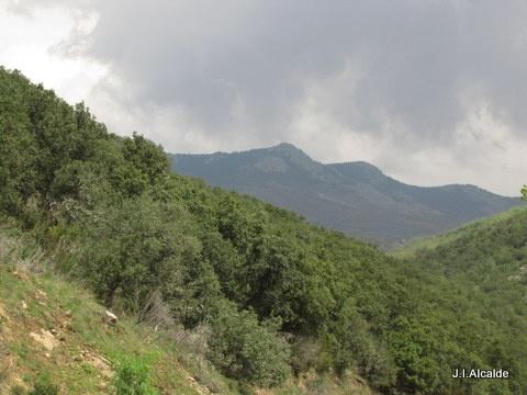 Sierra de Ayllón, Soria