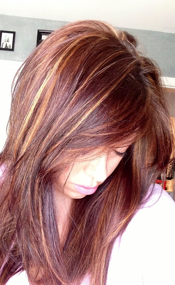 Displaying 15> Images For - Dark Red Hair With Blonde Highlights...
