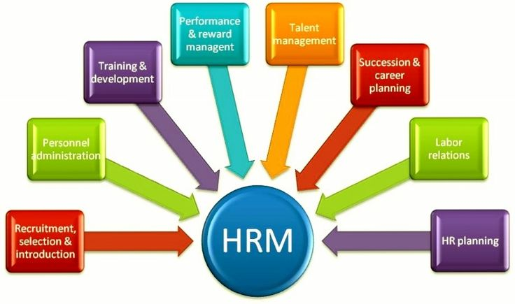 some major components of human resource management management essay Key components of human resource development human resource management: human resource development essay overview of hrd.