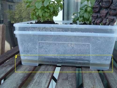 Self watering mini garden planter diy home pinterest - Diy self watering container garden ...
