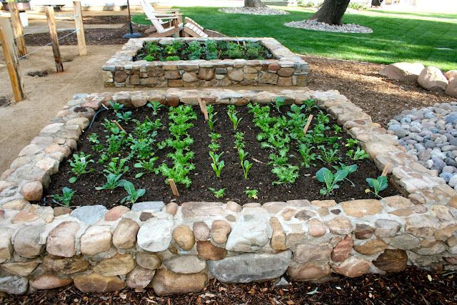 raised stone beds Lets Grow Pinterest