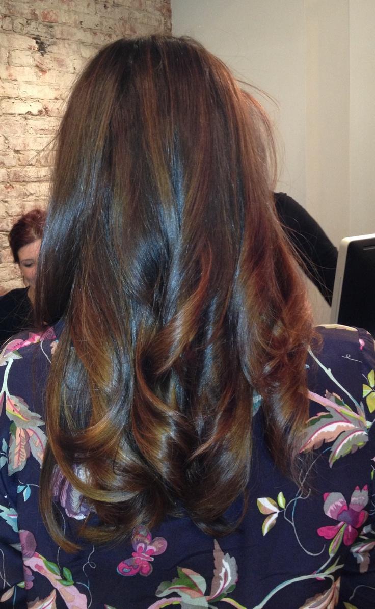 Subtle Highlights On Dark Hair Shiny dark brown hair with subtle honey ...