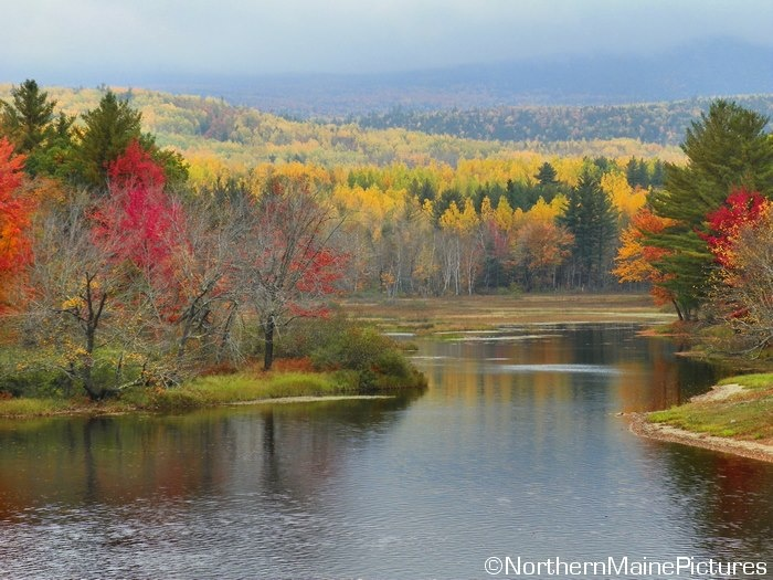 Pic from Northern Maine Pictures...Maine   Everything ...