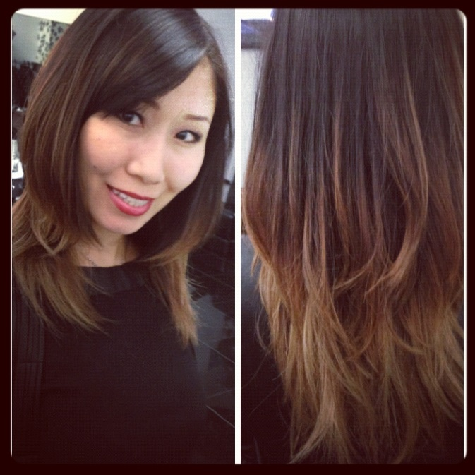 dark brown ombre hair straightinterior desin