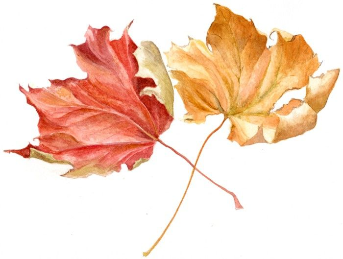Autumn_Leaves_Painting