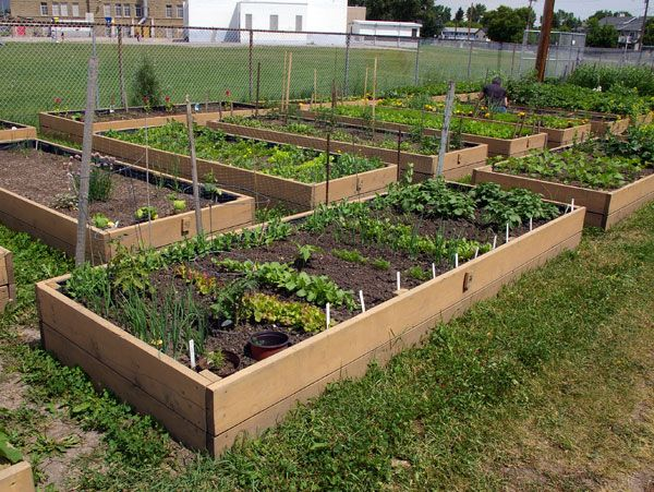 garden plot idea 2 gardens pinterest