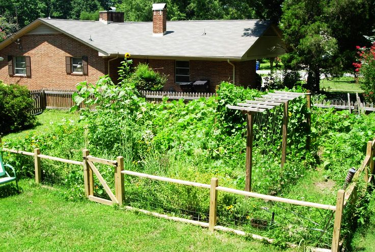Pin by d on gardening pond ideas pinterest for Vegetable garden fence ideas