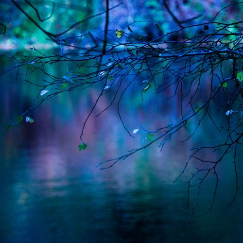 L'heure bleue by Agnès-aa on Flickr