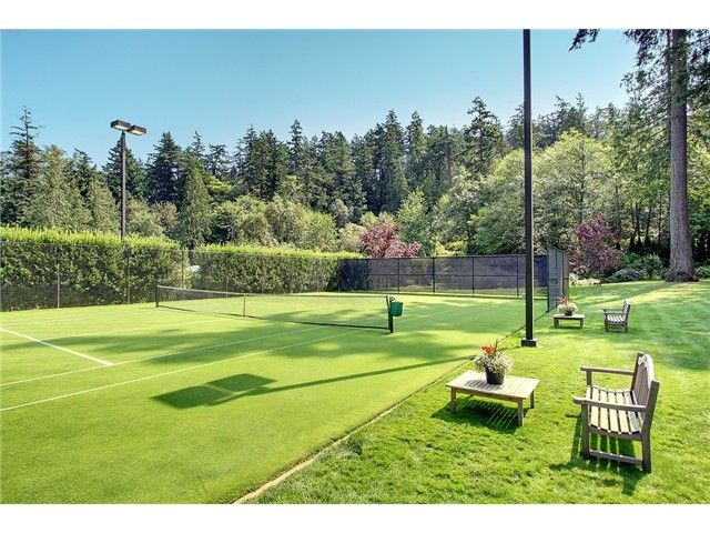Grass tennis court  All around the outside of the home Pathways, s