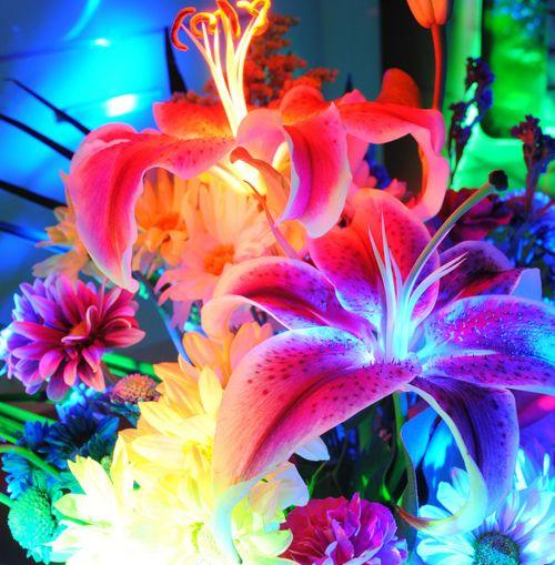 Neon Flowers | Florals | Pinterest