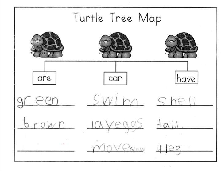 Mrs. Ricca's Kindergarten: Nonfiction Writing {Turtles}