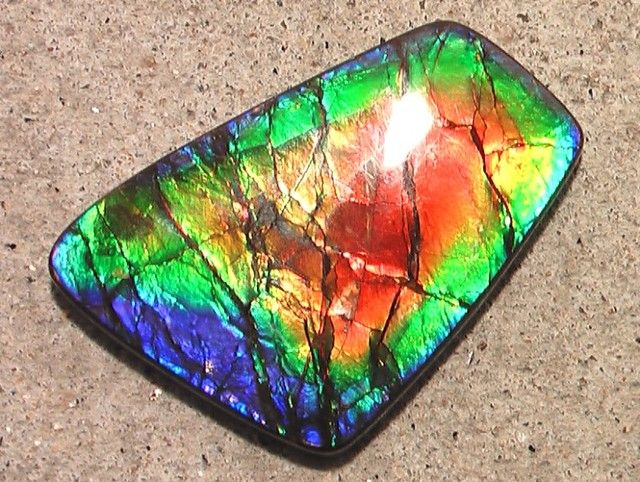 ammolite color my world