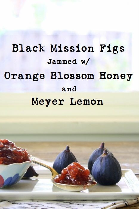 mission fig jam from the girl and the fig fig jam source bettycupcakes ...